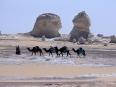 pouštní karavana